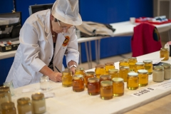 National Honey Judge Suzy Perkins hard at work at the Wiltshire Bee & Honey Day 2019