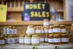 Local honey for sale at the Wiltshire Bee & Honey Day 2019