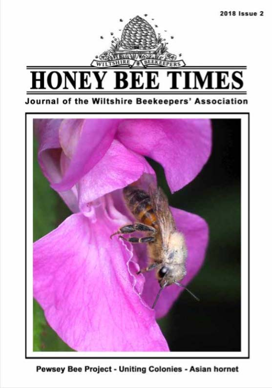 Honey Bee Times 2