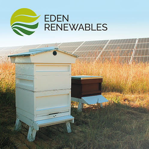 Eden Renewals hive and solar panels in a field